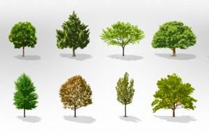 TreeFolks offering free trees